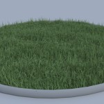 Grass Test Render 1