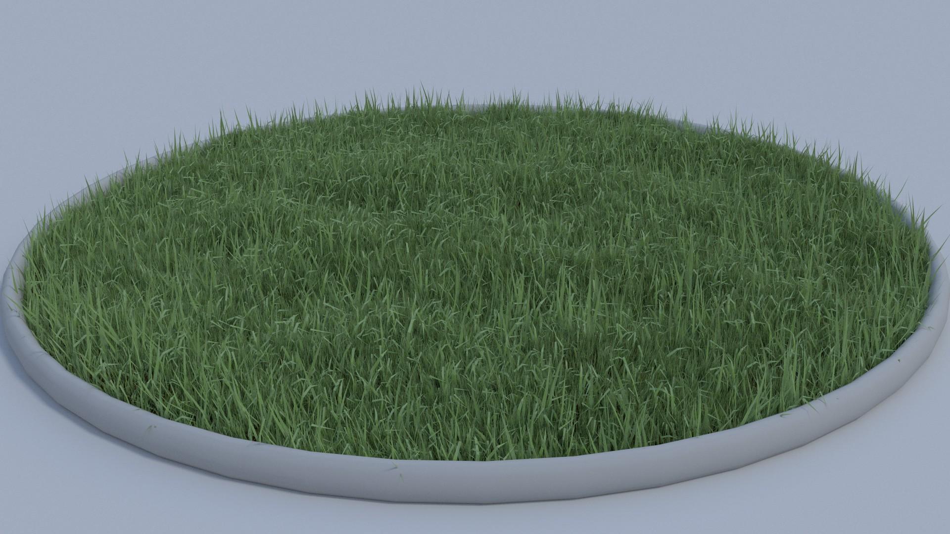 Grass Test Render 1